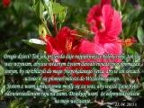 Oddanie siebie Bogu i Matce Bożej