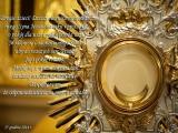 Dzisiaj również niosę wam swego Syna Jezusa na ręku i proszę Go o pokój dla was i pokój pośród was